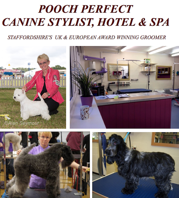 Boarding for pets wedding fares west midlands wedding for A perfect pet salon
