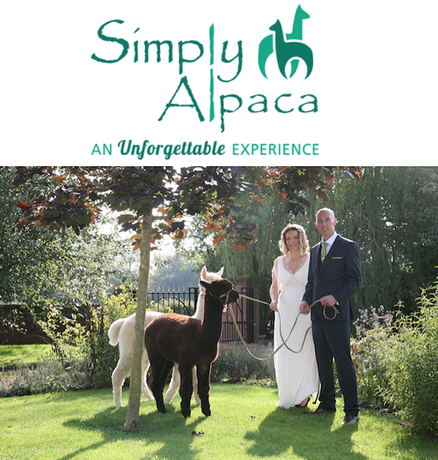 images/advert_images/asain-weddings_files/Alpacas.png