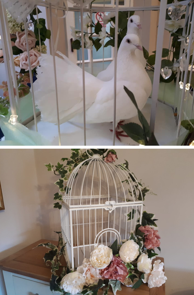 images/advert_images/dove-release_files/enchanted.png